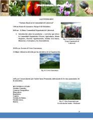 Itinerario.docx